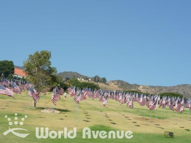 amerikan-flag