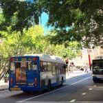 フェリーまで乗れちゃう!?シドニーの公共交通機関をオパールカードで乗りこなす!