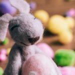 【イースターの祝い方 in オーストラリア】エッグハント、ホットクロスバンからイースターショーまで